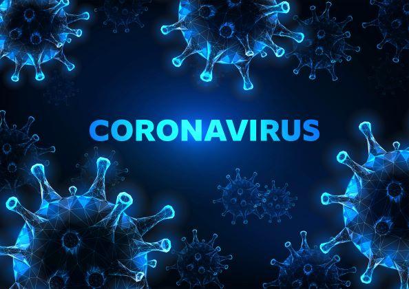 Coronavirus and Contract Performance